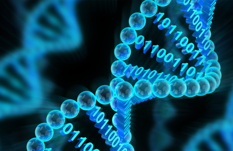 genetik_programlama.jpg